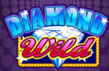 Онлайн казино плей фортуна официальный сайт 2018