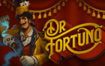 Play fortuna поиск зеркала