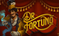 Play fortuna бонусы