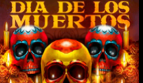 Play fortuna logo