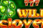 Play fortuna мобильная