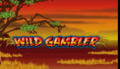 Фортуна плей казино официальный